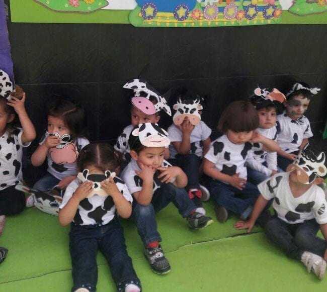 Colegios en Madrid Cundinamarca - El Mundo Magico de los Niños 5