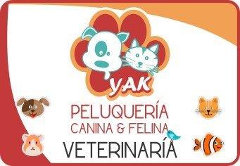 Veterinaria Madrid Cundinamrca